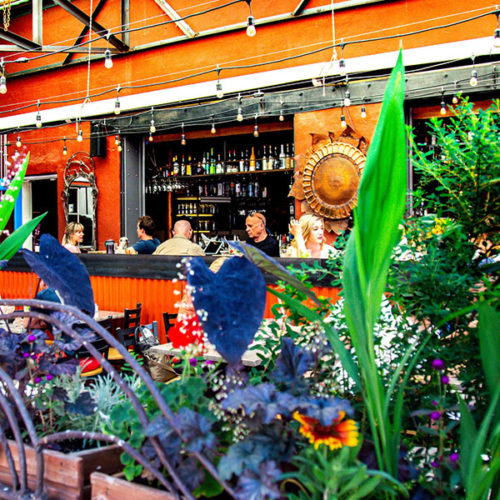 Bustling Outdoor Covered Patio
